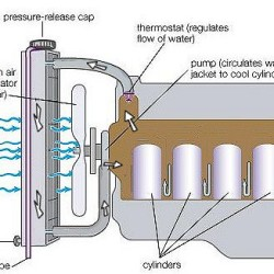 cooling_system_water_pump